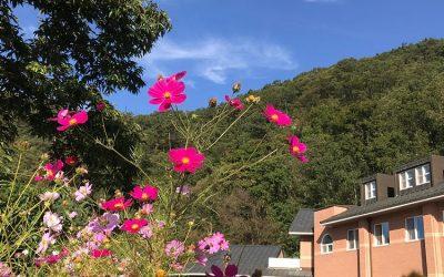 2020.10_홍천 기도의 집 가을 풍경